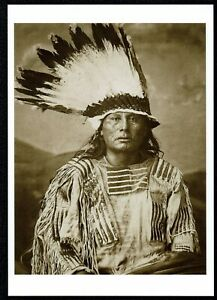 912-Postcard-GALL-Hunkpapa-Sioux-Indian-Chief-1882-George-Scott-Photo-NEW