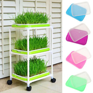 Planting-Cultivation-Plant-Grow-Trays-Nursery-Pots-Sprout-Plate-Soil-Free