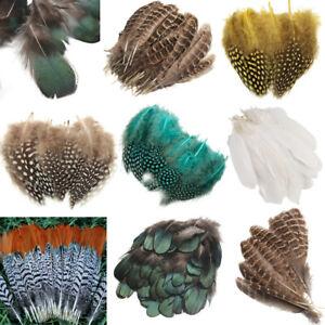 10-100Pcs-Beautiful-4-5-10CM-Pheasant-Tail-amp-Peacock-Feathers-DIY-Craft-Tool