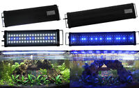60CM Aquarium Light Fish Tank Over-Head Lamp LED Light Blue / White + Blue