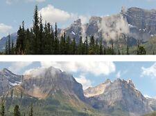 """ID 260N Backscenes N Gauge 'Rockies' 2 x 9"""" x 60"""" Rolls in Tube -Tracked 48 Post"""