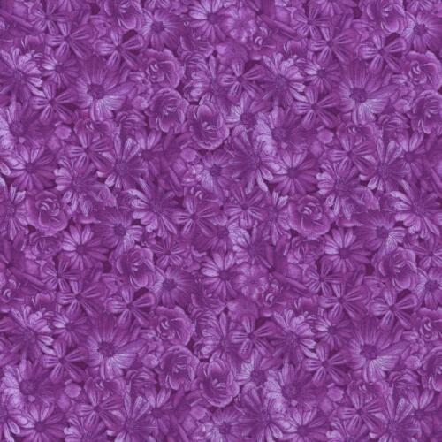 TONAL LIGHT Violet Dusk