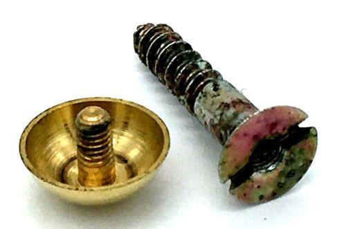 "1/"" screw polished BRASS metal dome heads not plastic 790 MIRROR SCREWS 25mm"