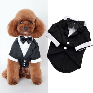Bowtie-Gentleman-Small-Dog-Tuxedo-Suit-Boy-Dog-Harness-Vest-for-Puppy-Dogs
