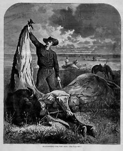 BUFFALO-SLAUGHTERED-FOR-THE-HIDE-ON-THE-PLAINS-BUFFALO