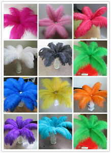 Pretty-10-200-pcs-natural-ostrich-feathers-6-24-inch-15-60-cm-Free-shipping