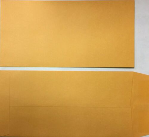 License Plate Envelopes Moist & Seal-500 Per Box, LPEV, (P2)