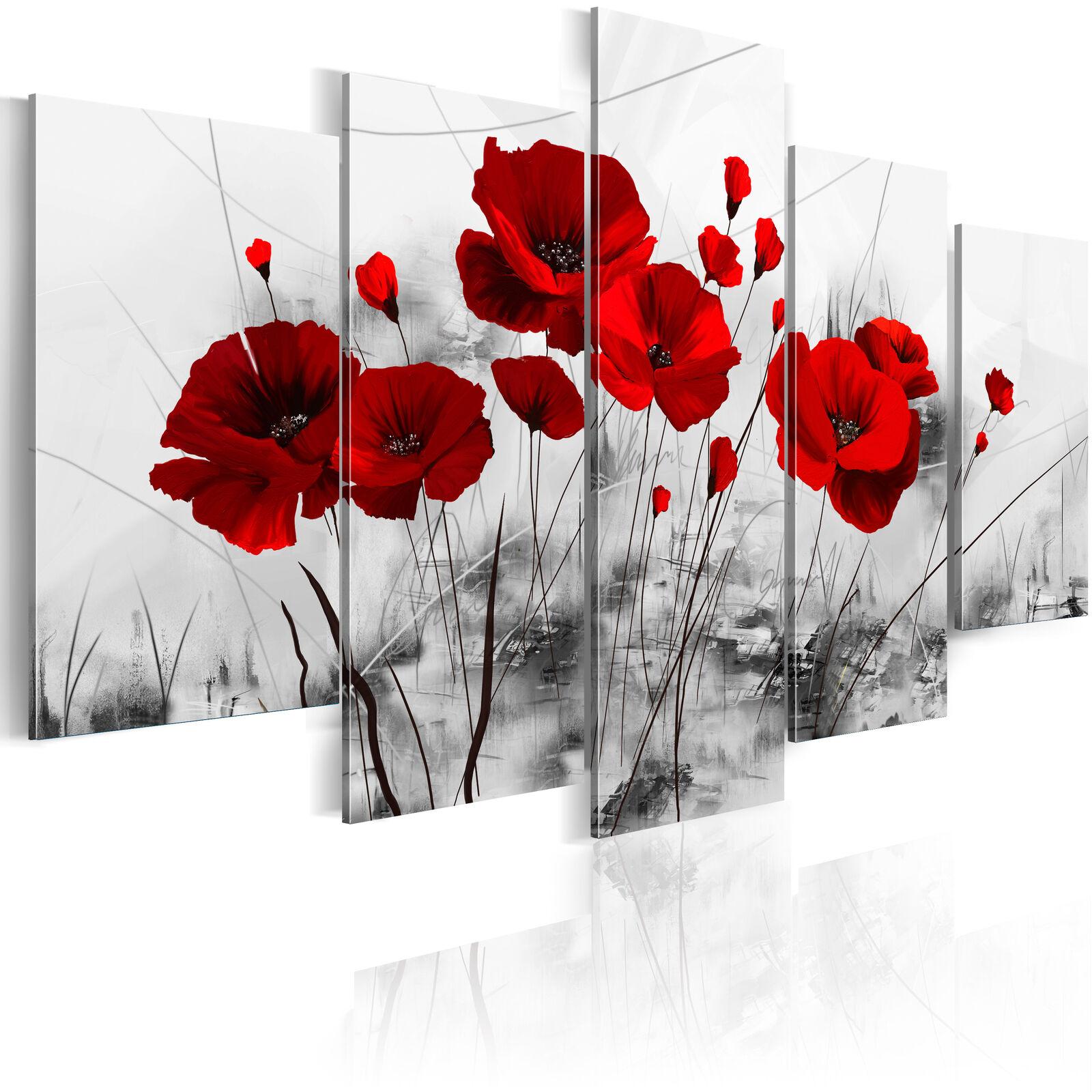 Cuadros en lienzo XXL decoracion de parot foto impresión 0107-5