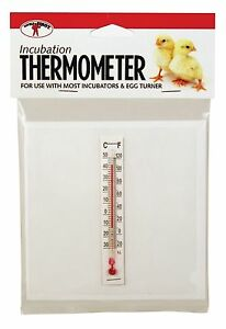 LITTLE GIANT Model 6303 THERMOMETER FOR EGG INCUBATORS CHICKENS REPTILE POULTRY