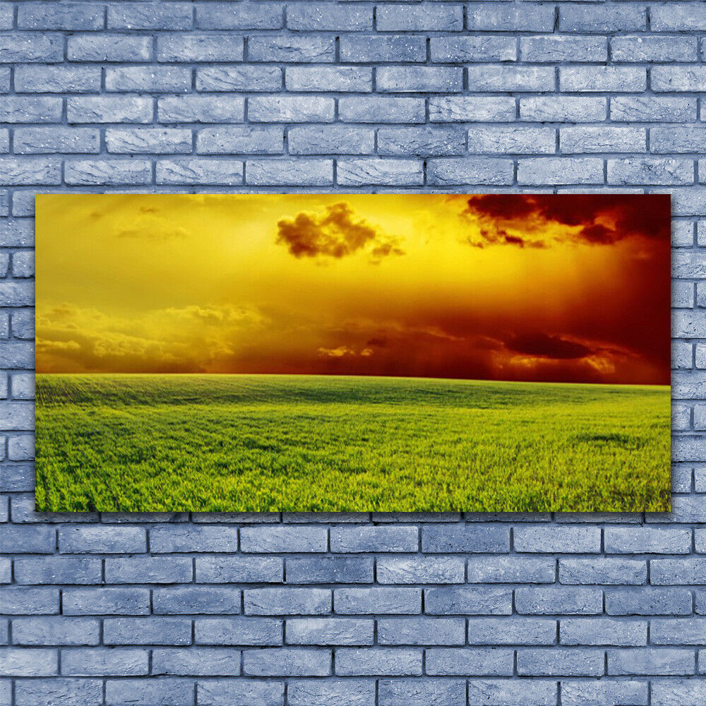 Glass print Wall art 140x70 Image Picture Field Landscape