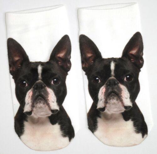 LADIES PHOTO FRENCH BULLDOG DOG SHOE LINERS SOCKS UK SIZE 4-8 BNWT