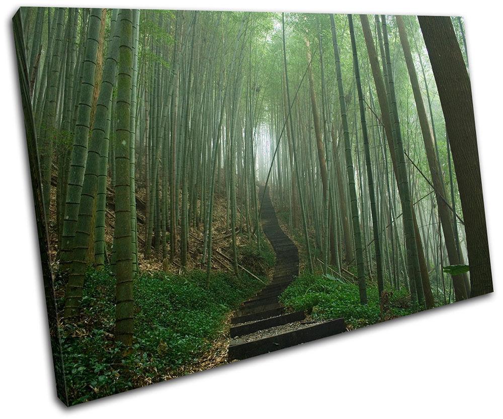 Les cadeaux de Noël sont envoyés tous les jours jours jours Japanese Forest Landscapes SINGLE TOILE murale ART Photo Print 33802d