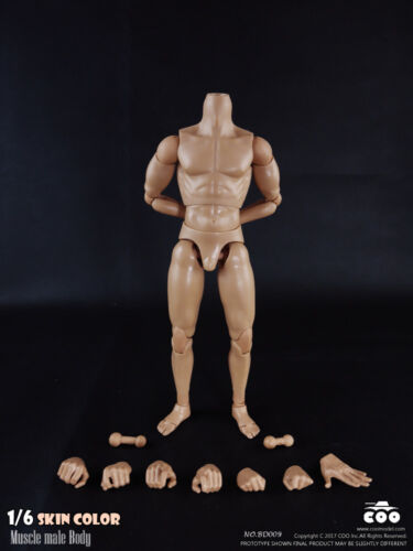 Skin color 1//6 25cm COOMODEL BD009 COO Standard Male Muscle Body