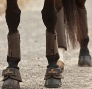 Kentucky-Eventing-Boots-Solimbra-D30-braun