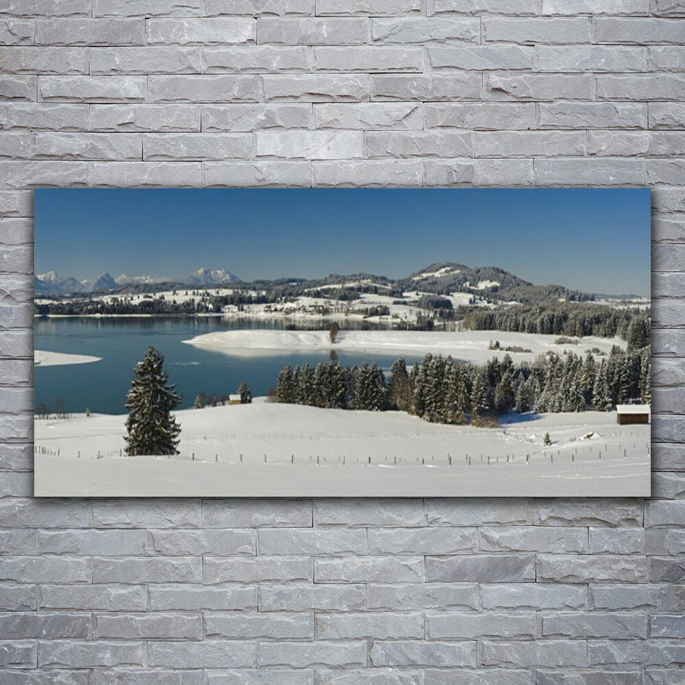 Verre Imprimer Wall Art Image 120x60 Photo Snow Lake Forest Landscape