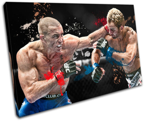 Pierre Sports SINGLE CANVAS WALL ART Picture Print VA MMA Georges St