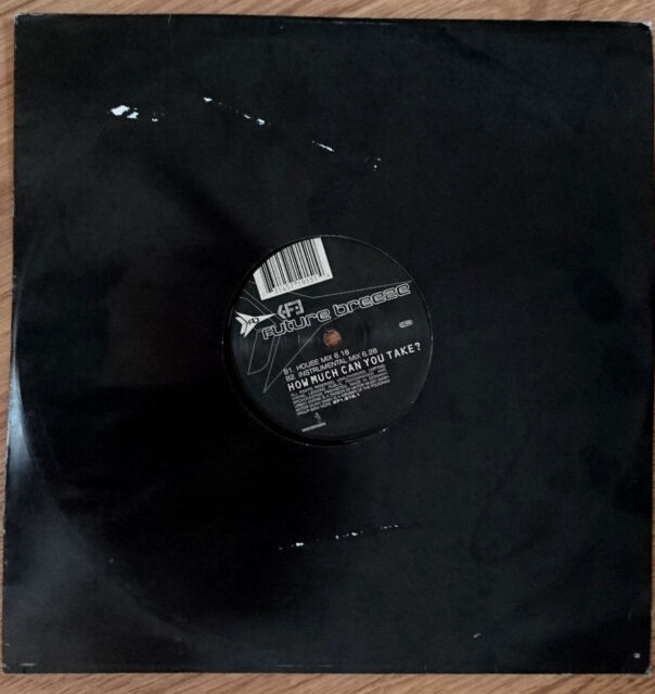 """12"""" / EP - Future Breeze - How Much Can You Take? / Trance, Electro House 1997"""