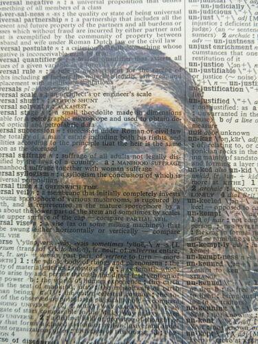 Sloth Print No.542 animal prints dictionary art sloth posters