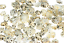 Star-Limpet-Seashells-Shells-Qty25-Tiny-Locate-Lost-Objects-Find-Your-Way-Ocean thumbnail 2