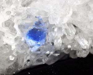 New-Find-Blue-Phantom-Beautiful-White-Chrysanthemum-Quartz-Crystal-Cluster