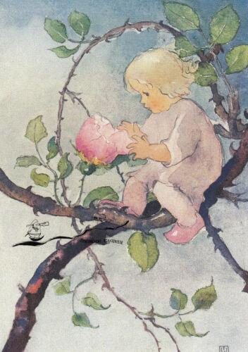 Postcard Art Kunstkarte Mili Weber Rosenmärchen