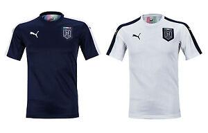 pretty nice 876f7 d681a Details about PUMA FIGC ITALIA Stadium S/S Jersey 75074703 Soccer Football  Training T-Shirts