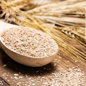 Mealworm Superworms Bedding  5LB of Wheat Wheat Bran fast ship bran