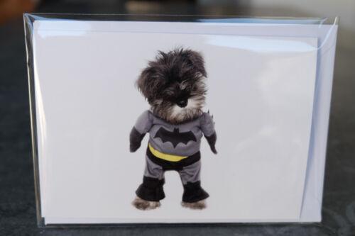 chien chiot Miniature Schnauzer Carte d/'anniversaire Batman Cellophane carte vierge