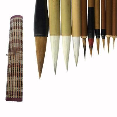10 teiliger chinesischer Schreibpinsel für professionelle Kalligraphie und V6C0