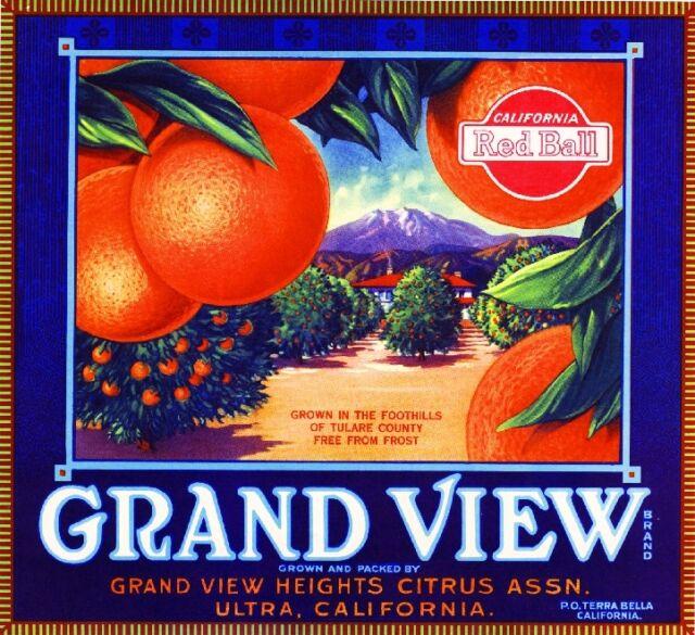 Exeter Tulare County Merryman Highball Orange Citrus Fruit Crate Label Art Print