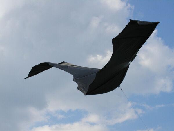 Einleiner-Drachen  schwarze schwarze schwarze Fledermaus XL 330cm b3b433