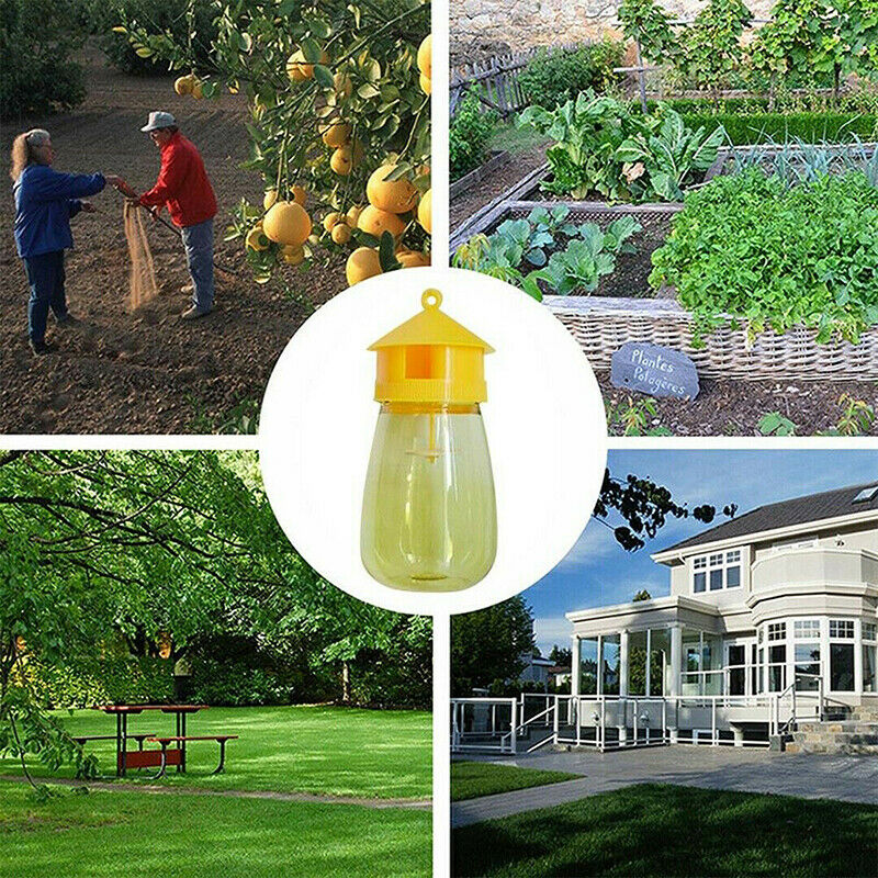 trap fruit stalls melon fruit insects fruit fly bee armyworm attract trap ag-hg