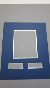 Picture Frame Mat Custom 16x20 For Detroit Lions With 3
