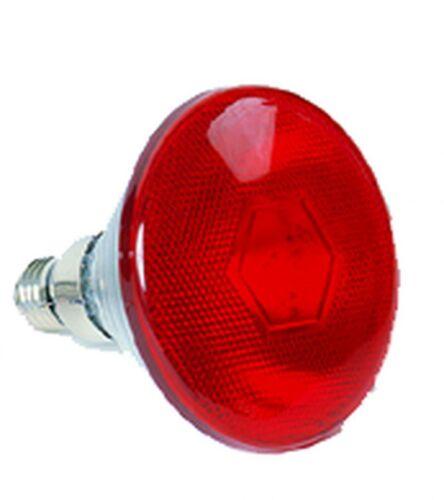 175 Watt 2 Pcs Nr.41003 Infrared Lamp Red Light Lamp Heat Lamp Extra Bulb