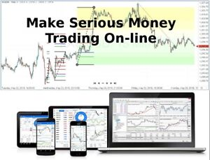Details About Learn How To Trade Forex Online Make Profits And Earn While You