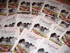 PANINI-SEALED-40-PACKS-200-stickers-Chevaux-en-liberte-Wild-Horses