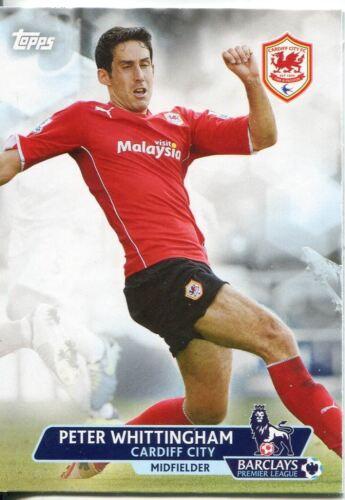 Premier Gold Soccer 13//14 Base Card #12 Peter Whittingham