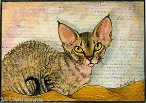 ACEO-LIMITED-EDITION-MOUNTED-DEVON-REX-CAT-PAINTING-PRINT-BY-SUZANNE-LE-GOOD