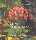 Zum Geburtstag von Günter A. Ulmer (1988, Gebundene Ausgabe)