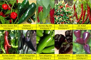 Mittelscharfe-Paprika-Chili-Peperoni-Samen-10Sorten-Schaerfegrad-2-5-Starterset