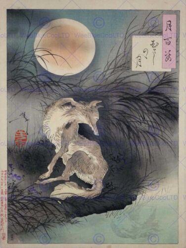 TSUKIOKA YOSHITOSHI WARRIORS OLD MASTER ART PAINTING PRINT POSTER ART 2686OM