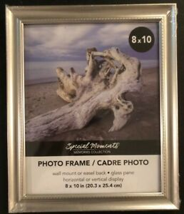 Special-Moments-8x10-Photo-Frame-Silver-Champagne-Rope-Easel-Wall-Hang-Glass