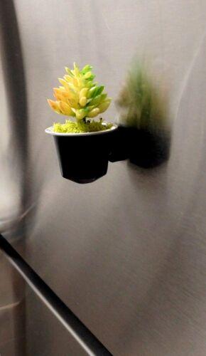 Plastic Succulent Plants Fridge Magnet Home Decor in Recycled Nespresso Capsule