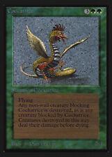 Dragon Whelp Collectors/' Edition NM CARD ABUGames