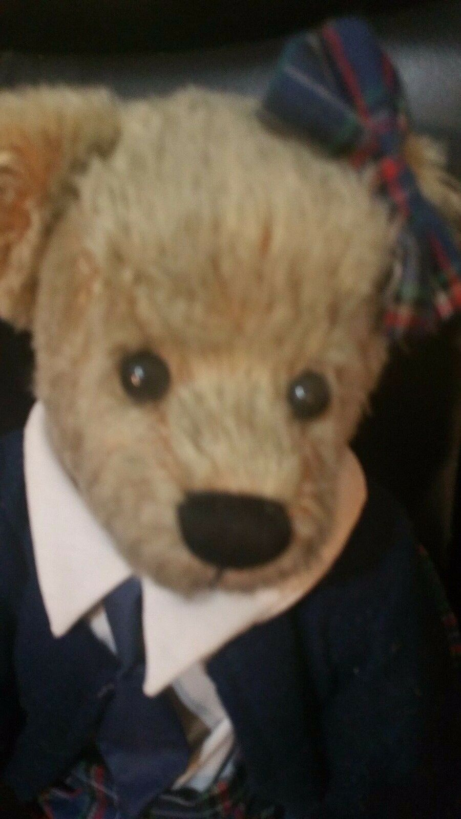 Bear named Mary by Ganz 16  fully Jointed