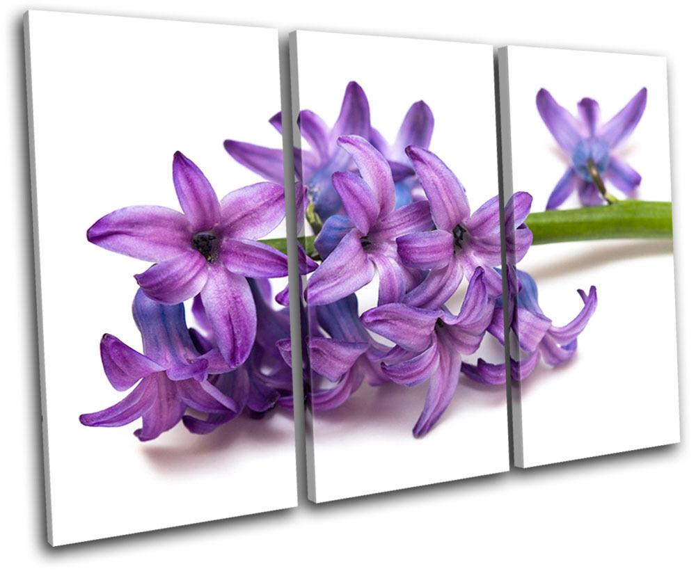 Flower Flowers Floral TREBLE TELA TELA TELA parete arte foto stampa e5b530