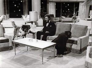 Peter-Alexander-With-Chimpanzee-And-Dog-Vintage-Press-Photo-Unfried-U-2070