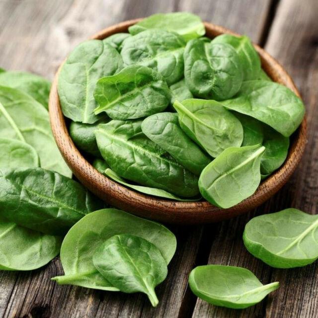 Seeds Spinach Matador Giant 25 Days Water Vegetable Organic Heirloom Ukraine