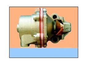 POMPA INIEZIONE LOMBARDINI 25LD330-2 425-2 RUGGERINI MD 150-190  INJECTOR PUMP