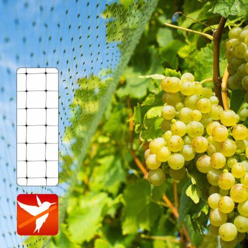 Schutznetz Vogelschutznetz Laubnetz Laubschutznetz Teichnetz Gartennetz 4 Größen